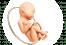Гинекологические услуги для беременных